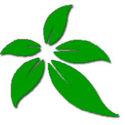 绿色生态有机食品